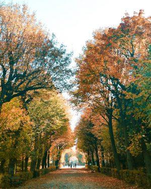 4. November, 18 Grad, 50 Shades of Klimawandel. 🔥🔥🔥 #1000thingsinvienna #wien #viennatouristboard #wonderlustvienna #igersvienna #discoveraustria #feelaustria #visitaustria...