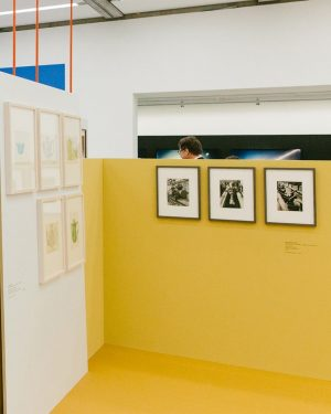 """Reading Time in Space"", the new exhibition at mumok, traces passages of time and artistic concepts with..."