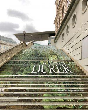 💚💚💚 #albrechtdürer #albertinamuseum #kunstausstellung #wien #viennaaustria Albertina Museum