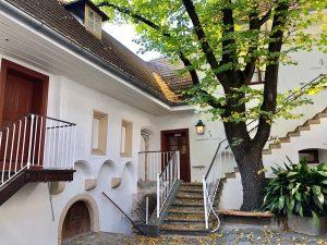 日本は雨… そして欧州は記録的な高温のようですね… · 少し爽やかな気分になって頂けそうなphotoを🌱 · ベートーヴェンが、回復しない聴力の衰えに絶望して書いた有名な「ハイリゲンシュタットの遺書」が書かれた家が博物館になっていて、そこへ行った時のもの。 · ウィーン中心部から少し離れているハイリゲンシュタットは、ベートーヴェンが楽想を練りながら散策した小川沿いの散歩道もあり、いまだに自然豊かでのんびりした雰囲気の街。 温泉保養地でもあり、ベートーヴェンも耳の治療を兼ねてここに来たんですね。 · 道路は入り組んでいてたどり着くのにちょっと苦労しましたが、博物館はちょうど2018年にリニューアルオープンしたばかりで、見られる部屋・展示物が増え、外観や庭もとても綺麗でした。 · 白亜の壁と木々の緑が美しい...♪*゚ · 生まれ故郷のボンからウィーンに移り住む際に乗った馬車の「扉」(の上には「かつら・帽子」)やトランク。 コーヒー好きだった彼が使用したポット☕。 ·...