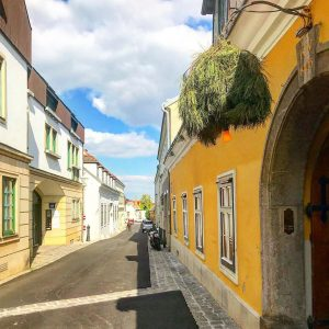 偉大なる作曲家 ベートーベンが住んでいた家の前 (ベートーベンミュージアム)の 風景。 彼が歩いたこの道を自分も今踏んでいる と考えたら何だか感慨深い気持ちに なりました! #beethoven #beethovenmuseum #vienna #ウィーン #ウィーン郊外 #ベートーベン #ベートーベンミュージアム #ウィーンの街並み Wien Museum...