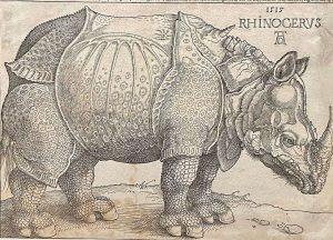 Amazing art by Albrecht Dürer!!! #albrechtdürer#albrechtduerer#albertina#art#vienna#wien Albertina Museum