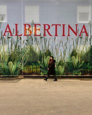 😍#albertinadürer 😎🌿 #albertina #albertinamuseum #kunst #art #november🍁 #strollingaround #innerestadtwien #wien🇦🇹 #wienliebe #wienstagram #meinwien #wien_love #vienna🇦🇹 #ilovevienna #viennamylove...
