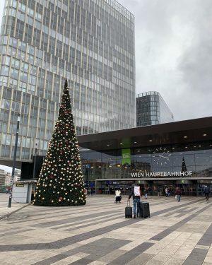 Šli sme pozrieť vianočné trhy do Vídne, ale tam samej čech vole👍😅 aj tak nám tam bolo...