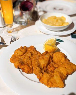 Unser Original Wiener Schnitzel schmeckt nicht nur, sondern ist auch ein echter Hingucker ...