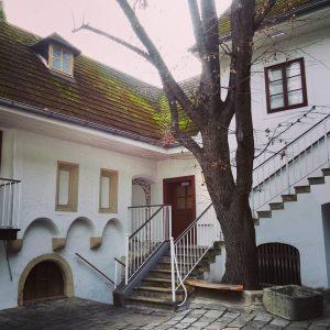 #wien #vienna #vienne #viena #vienna_austria #vienna_city #thisisvienna #ilovevienna #welovevienna #wienliebe #visitvienna #viennawaitsforyou #viennanow #discoveraustria #discovervienna #igersaustria #igersvienna...