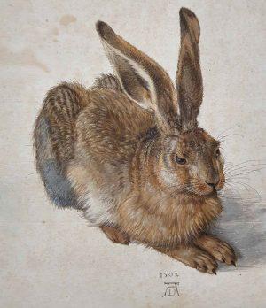 Albrecht Dürer kunde för 500 år sedan Albertina Museum
