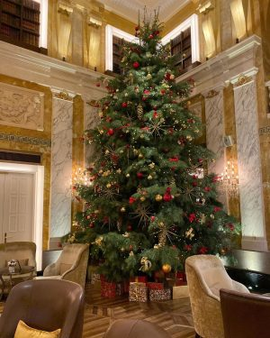 The Hotel Imperial wishes you and your beloved ones A Merry Christmas and A Magical Holiday Season.🎄...