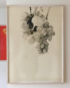Exhibition I really liked @viennasecession number 2 @lisaholzerlisaholzer #grapes #whitechocolate #sploosh