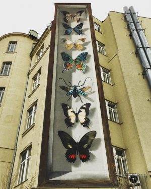Schmetterlinge von @mantrarea 👌 . . . #schmetterlinge #streetart #wien #vienna #mantra #mantrastreetart ...