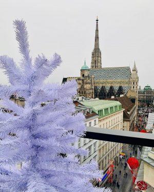 Rooftop Glühwein 💕#lameerooftop #viennaaustria LAMÉE ROOFTOP