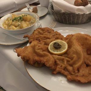 #wiedeń #wien #kawawwiedniu #wienerschnitzel #citytour #shopping #apfelstrudel #kartofelsalat #coffeetime #newyears2020 #nakuchni Meissl & ...