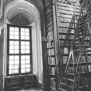 Trip to vienna... . . . . . #nationalbibliothek #nationalbibliothekwien #booklover #bookbookbook #vienna #wien #lasttrip #travellover #travellove...