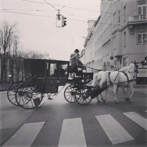 Work at Vienna 👍 #business#businesstravel#job#healthcare#photographer#photography#travel#travelphotographys#travelphoto#businessman#vienna#wien#austria#horse#culture#👍