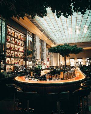 Amazing Interiors 💫💫 @parkhyattvienna . . #parkhyattvienna #hyatt #parkhyatt #thebankvienna #thebankbrasseriebar #cafeamhof Park Hyatt Vienna