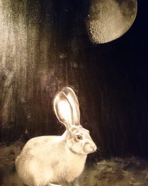 Hase den Mond anbetend 🙏 #naturephotography #naturefirst #nhm #wienliebe❤ NhM Naturhistorisches Museum Wien