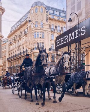 Save Carbon Dioxide, take a horse-carriage. 🐎 Horses are probably the most environmentally ...
