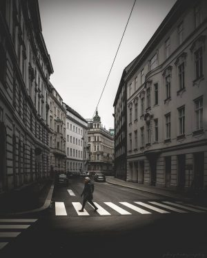 Walking through the city streets #moodyvienna