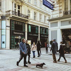 👀 ⠀ #vienna #austria #vsco #vscomd #vscomoldova #vscoaustria #vscovienna #travel #travelblogger #travelling #trip #aroundtheworld #tumblr #pinterest #valerie_m...