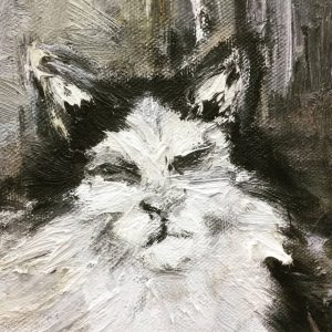 Meow. Semperdepot
