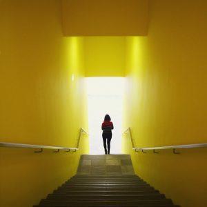 #mondaymonday #belvedere21 #intothelight #itsallyellow #💛 #stairwaytoheaven #downstairs Belvedere 21