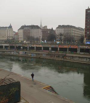 VIENNA/ Lebensraum Donaukanal _________________ #goodmorningvienna #vienna_city #viennanow #wiennurduallein #donaukanal #igersvienna #igersaustria #365austria #viennadaily ...