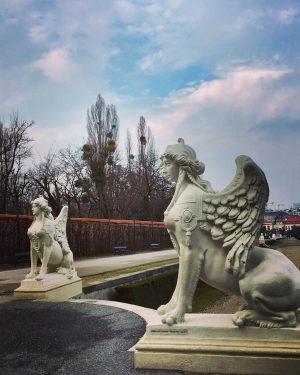 😍#schlossbelvedere ✨ #strollingaround #belvederegardens #nopeople 🤔 #january2020 #winterinvienna #winterinvienna #bewegungmachtglücklich #winterzeit #sleepygarden #wien🇦🇹 #wienliebe #wienstagram #meinwien #wien_love...