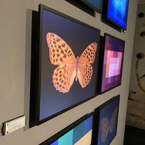 2x wow für künstlich generierte #Schmetterlinge by @claudiusschulze aber auch auto-updating #saalzettel #displays #e-ink (& andere tech-enhanced...