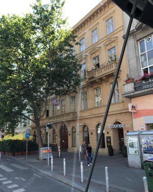 #casastrauss #beautifuldestinations #vienna #austria#europa#instagood #travelblogger #viaggiando #viaggiatore #dailypic #travelgram #travelling#trip#picotheday #travel#traveltheworld #ontheroad #ontheroadagain ...