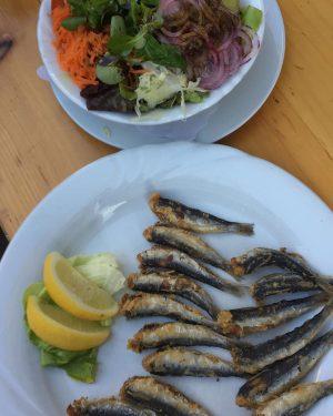 #sardines #schleifmuehlgassenfest #anzengruber Anzengruber-Cafe