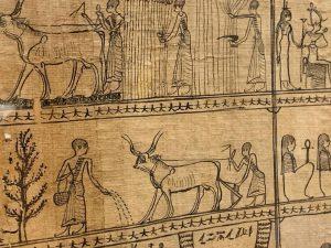 #vienna #austria🇦🇹 #papyrus #museum #europe #instapic Papyrusmuseum der Österreichischen Nationalbibliothek