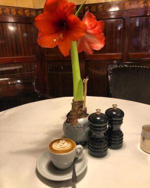 #gutenmorgen #butfirstcoffee #espressomacchiato #schwarzeskameel #vienna #frühstück Zum Schwarzen Kameel