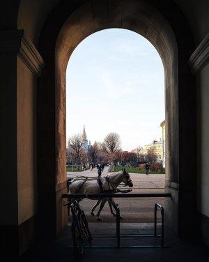 #Vienna, nel suo splendido e dorato periodo invernale è una delle capitali che ...