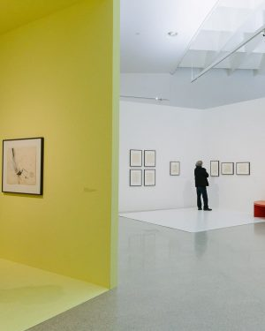 From her first figurative studies in the mid-1950s to her final sketches for sculptural works in the...