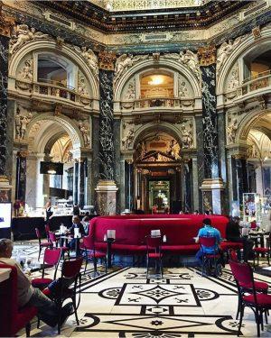 ТОП-7 наших любимых кофеен Вены: ⠀ 1. Cafe Central – пожалуй, самое знаменитое заведение Вены, которое открылось...