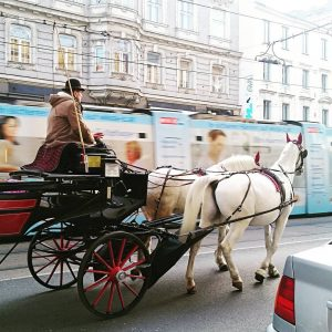 OLD AND NEW -- A horse-drawn Fiaker heads home at the end of the work day as...