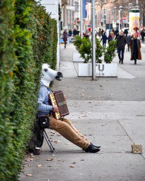 Wien, Wien nur du allein 🐴 | #wien #wienliebe #karlsplatz #pferdemusikanten #pferdemusik . ...