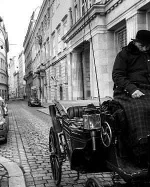 #vienna #viennaaustria #austria🇦🇹 #austria #travelphotographer #travel #travelphotography #blackandwhitephotography #traveltheworld