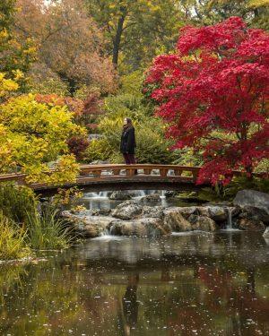 ¿Hemos vuelto a Japón en otoño? ¡No! Es un pequeño rincón de Viena, un jardín japonés que...
