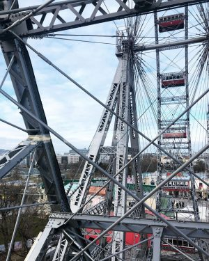 Sometimes I test my fear of heights to realize I still have a fear of heights.... 🎡...