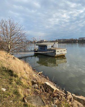 #Donauinsel #Natur #nature #donau #danube