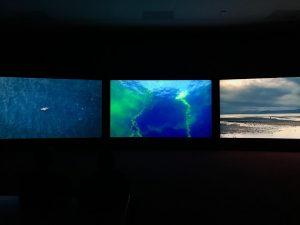 Vertigo Sea - tic toc tic toc ⏰ raising environmental and human awareness ...