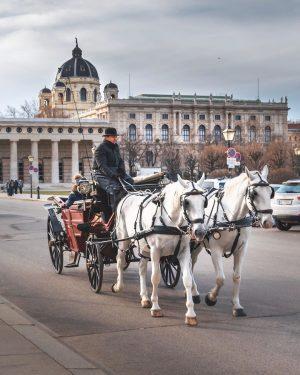 Heldenplatz, Vienna * * #vienna #wien #austria #österreich #longexposure #wanderlust #city #citylife #cityphotography ...