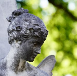 Zentralfriedhof Portraits😉 Sony A7iii, FE 70-200 F4, ISO 640, f/4, 1/640 sec #beautifulplaces_inthe_world #longexposure #landscape #landschaftsfotografie #fotoschneider...