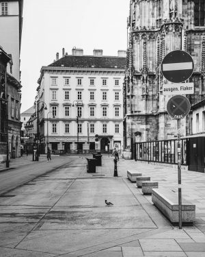 Wien, Stephansplatz Dienstag 17.03. 15:45 Tag 2 der Ausgangsbeschränkungen in Österreich. - Day 2 of restrictions in...
