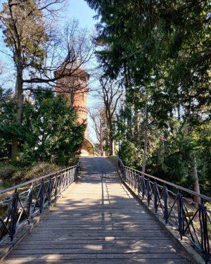 Frühlingsstimmung im Wiener Türkenschanzpark. 😍💚 Hoffentlich können wir die Natur ganz bald wieder mit Familie und Freunden...