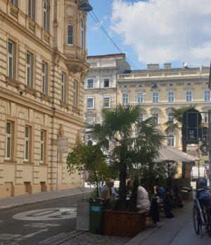 Schleifmühlgasse/ Rechte Wienzeile Naschmarkt ________________ #Wien #vienna #viennanow #wienistanders #lockdown #covid_19