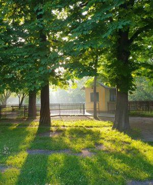 Archivbild Prater @liliputbahn ___________________ #goodmorning #goodtime #goodmorningvienna #liliputbahn #Prater #naturinthecity #vienna #wien #vienna_city #viennadaily #vienna_austria @viennatouristboard Prater,...