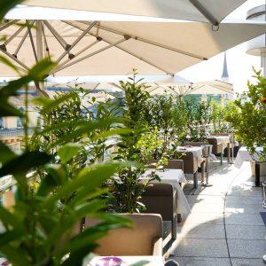 City Jungle 🌿 #terracelife #docorestaurant #stephansplatz . . #readyforourguests #tableforfour #docoterrasse #vienna #wien #viennafood #viennanow #viennafoodstories #viennafoodguide...