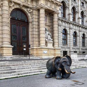 Austria 🇦🇹 Vienna 1010 Innere Stadt Maria-Theresien-Platz Naturhistorisches Museum